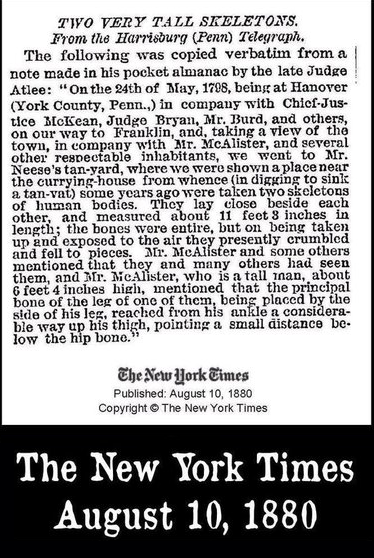 nytimes002