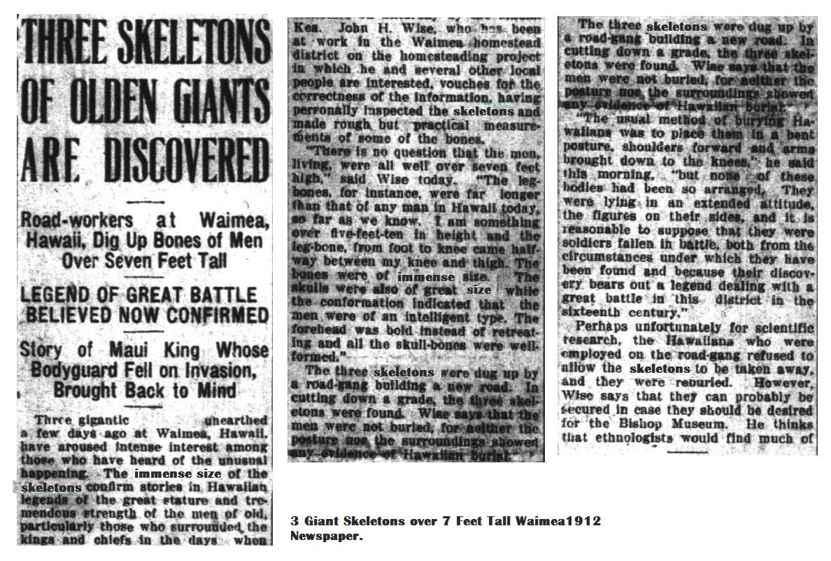 3 Giant Skeletons over 7 Feet Tall Waimea1912 Newspaper.