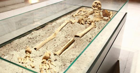 skeleton-620x350-585x306