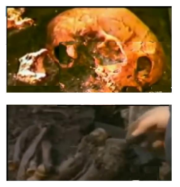 skull from video