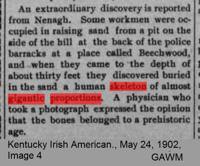 Kentucky Irish American., May 24, 1902, Image 4